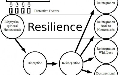 richardsons-resilience-model1