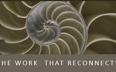 The-Work-that-Reconnects-poster